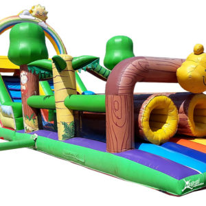 Winnie the Pooh obstacle courses